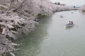 2012弘前公園07