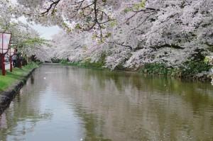 2012弘前公園02