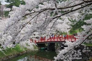 2012弘前公園06