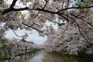 2012弘前公園01