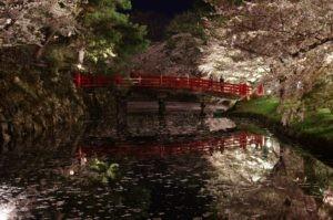2012弘前公園16