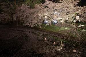2012弘前公園13