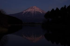 日本平、田貫湖05