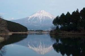 日本平、田貫湖04