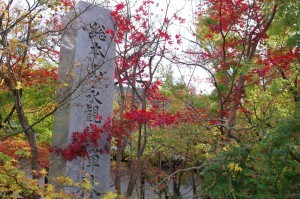 2015京都紅葉狩り01