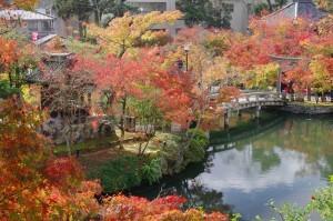 2015京都紅葉狩り02