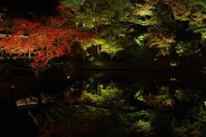 2015京都紅葉狩り09