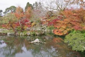 2015京都紅葉狩り03