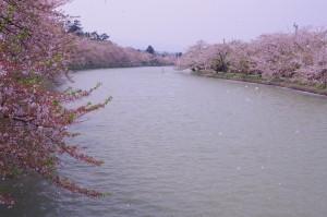 2015弘前公園04