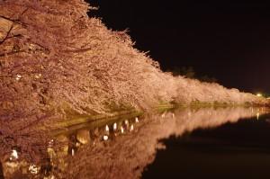 2014弘前公園23