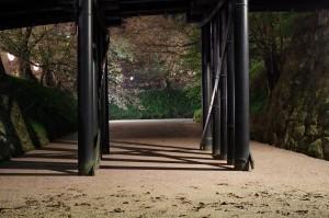 2015弘前公園22