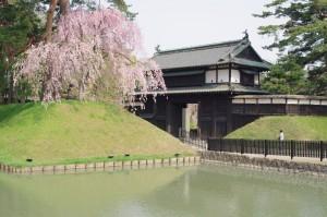 2015弘前公園01