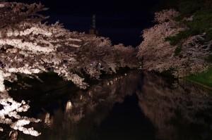 2014弘前公園15