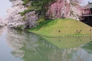 2014弘前公園03