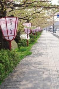 2015弘前公園03