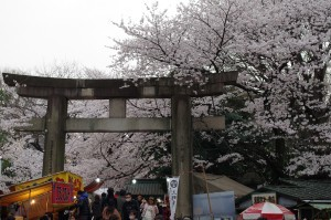 20130330千鳥ヶ淵上野公園07