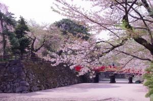 2015弘前公園15