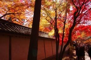 2012京都紅葉09