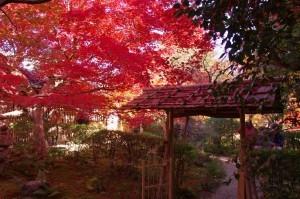 2012京都紅葉10