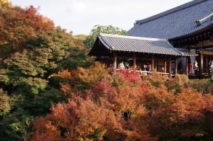 2013京都紅葉狩り21