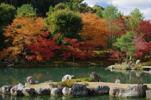 2013京都紅葉狩り05