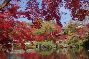 2014京都紅葉狩り23