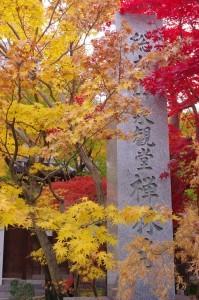 2014京都紅葉狩り18
