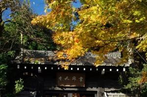 2012京都紅葉05