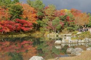2014京都紅葉狩り03