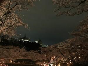 2016八幡山02