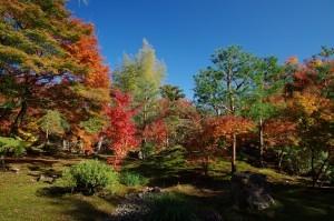 2012京都紅葉15