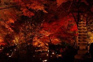 2013京都紅葉狩り14
