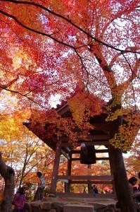 2014京都紅葉狩り17