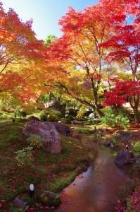 2012京都紅葉19