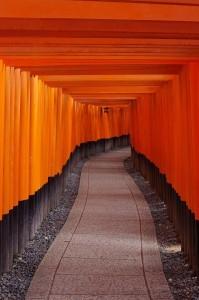 2014京都花見04