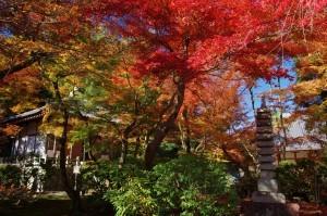 2012京都紅葉16