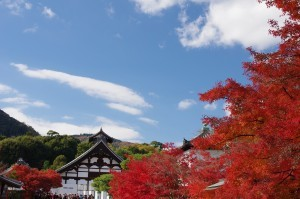 2013京都紅葉狩り04