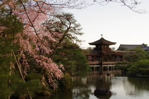 2014京都花見15