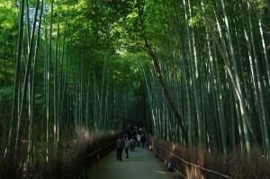 2012京都紅葉04