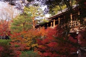 2013京都紅葉狩り24
