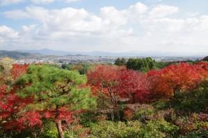 2014京都紅葉狩り12
