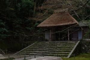 2014京都花見09