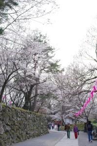 2013長野光林寺、八幡原史跡、小諸懐古園10