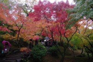 2012京都旅行初日15