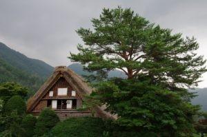 2012白川郷06