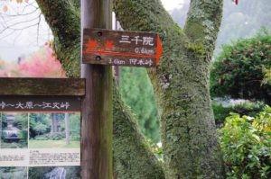 2012京都旅行初日01