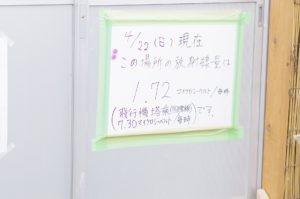 2012花見山公園06