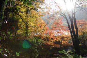 2012京都旅行二日目04