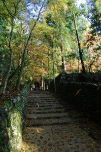 2012京都旅行二日目05