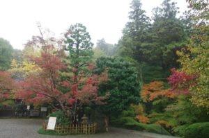 2012京都旅行初日18